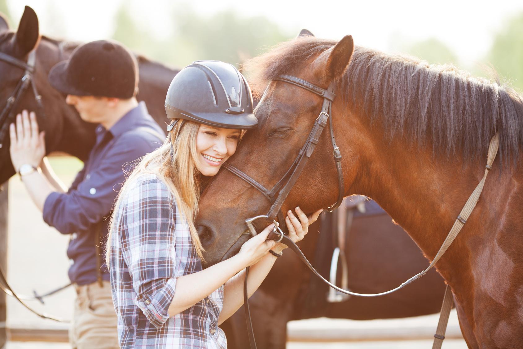 Kaufvertrag – Pferd